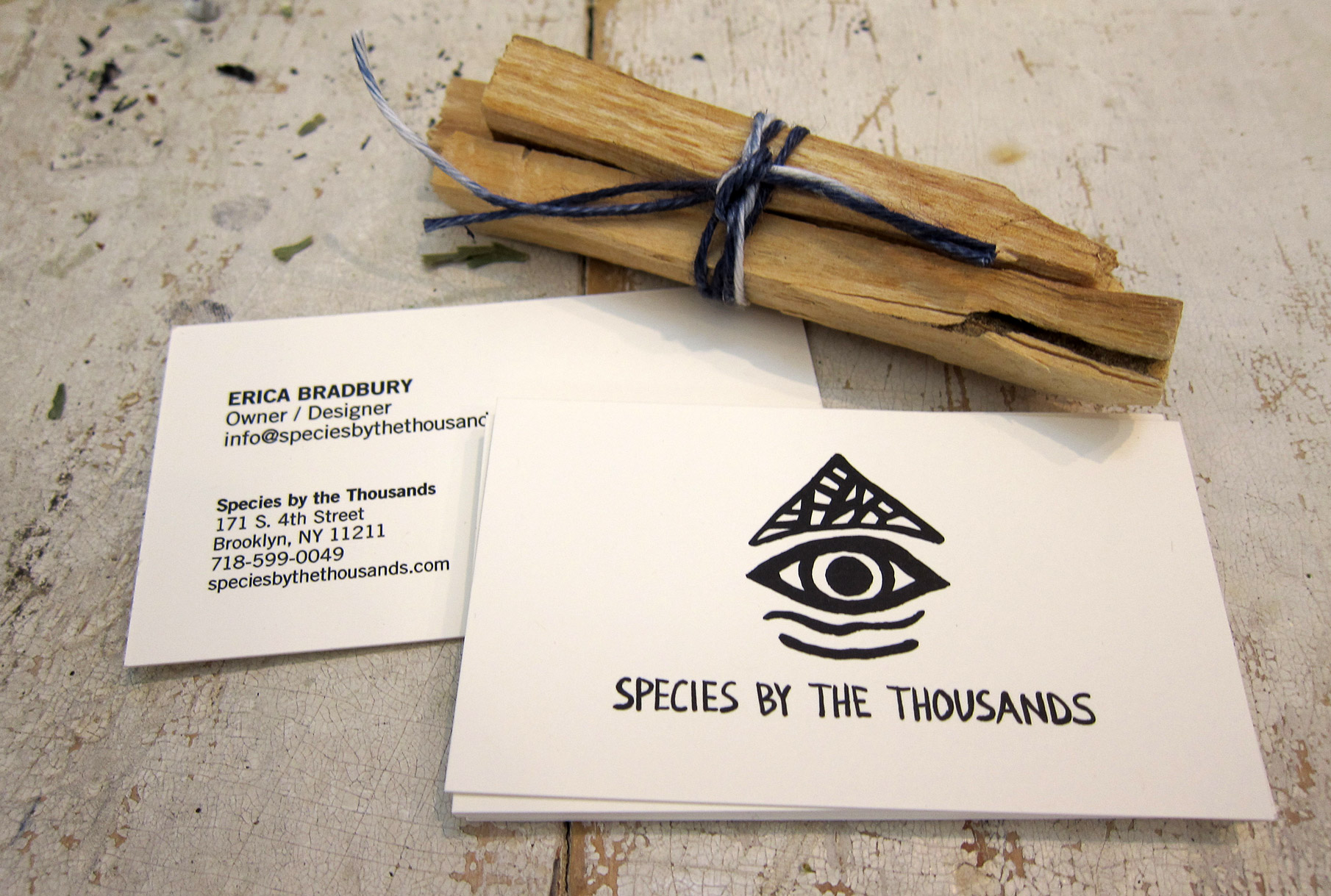 SPECIES BY THE THOUSANDSBrand ID Concept and Design - Michele Colomer